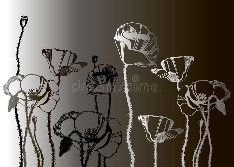 Pattern poppy background flower wallpaper nature stock illustration