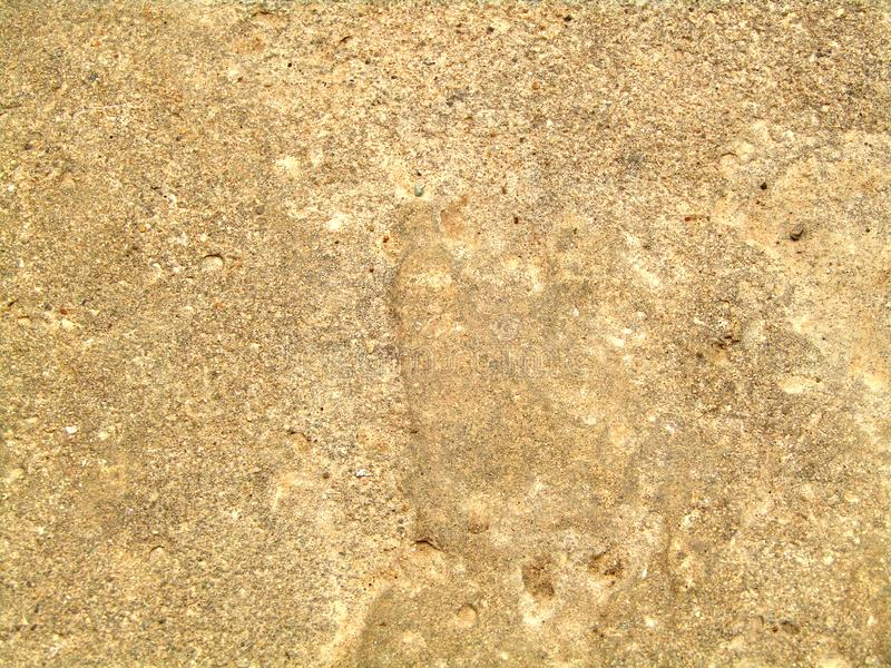 Pattern with raw beige stone texture. Background. Details. Pattern with raw beige natural stone texture. Pavement material. Background. Details royalty free stock images