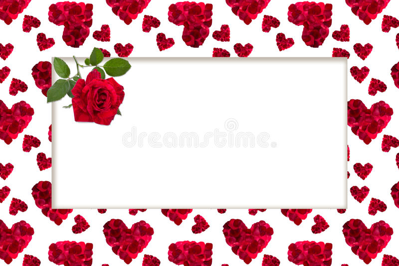 Pattern red heart rose petals greeting card billet. Pattern red heart rose petals on a white background greeting card billet royalty free stock images