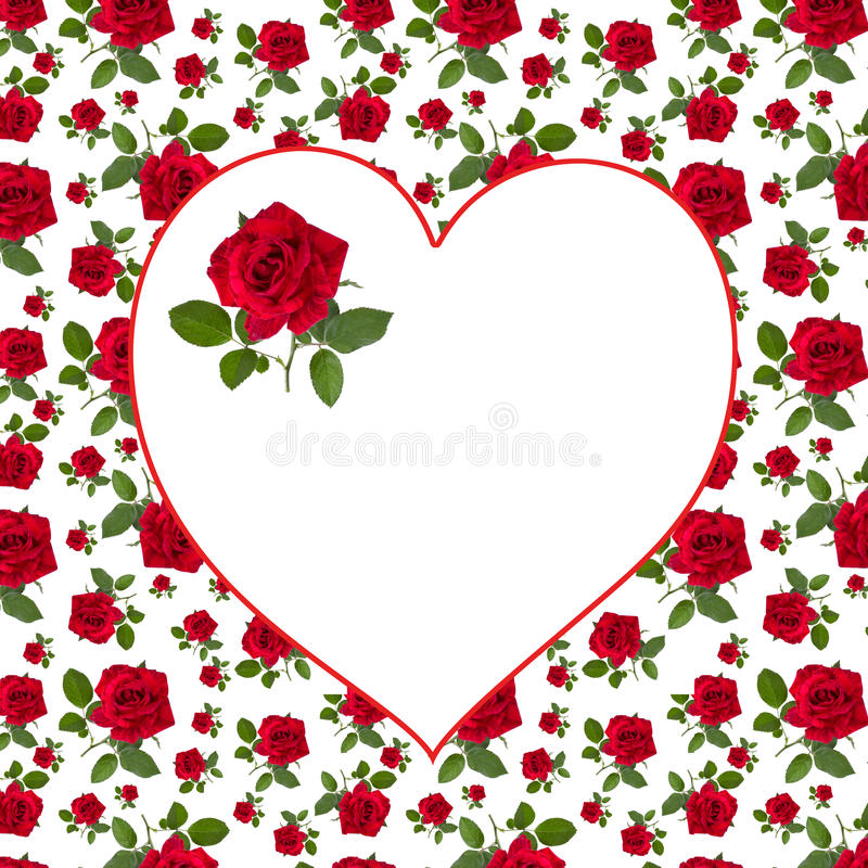 Pattern red rose greeting card billet. Pattern red rose on a stalk of green leaves on a white background greeting card billet stock illustration