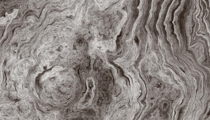 Pattern of rings of a tree. Texture of roots of tree with wavy lines and age rings. Pattern of rings of a tree. Abstract texture and background. 2d illustration stock photos