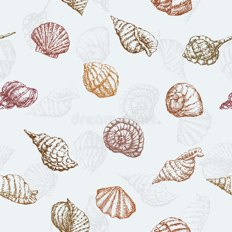 Pattern of the sea shells. Vector pattern of the various hand drawn seashells vector illustration