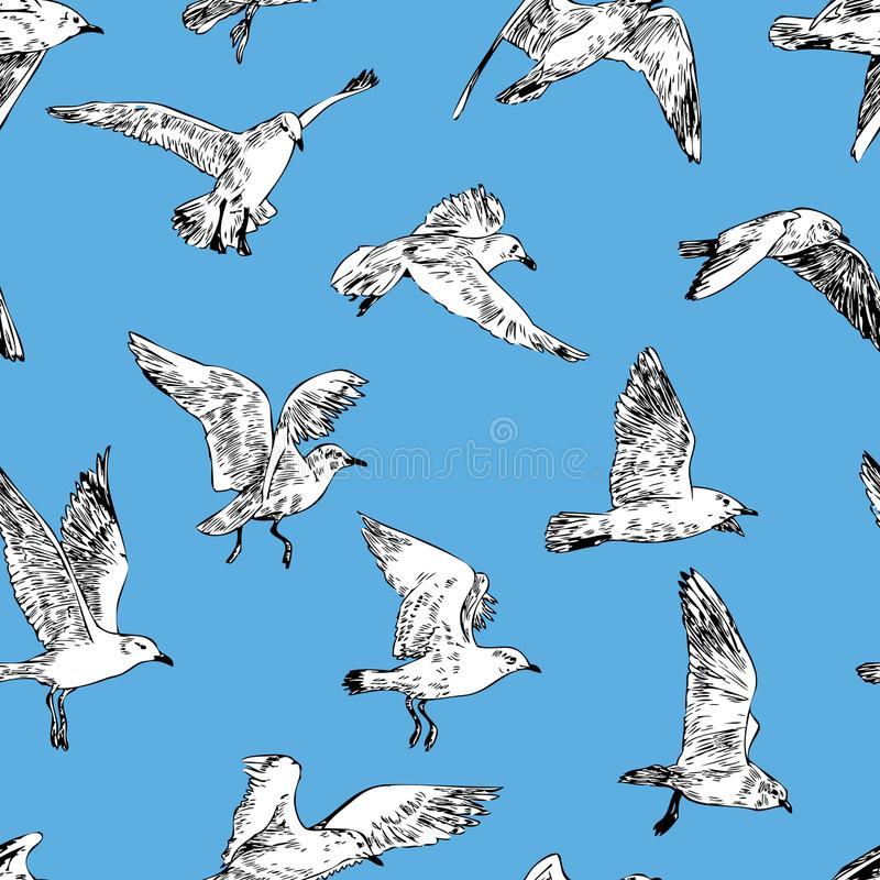 Pattern of the seagulls in flight royalty free illustration