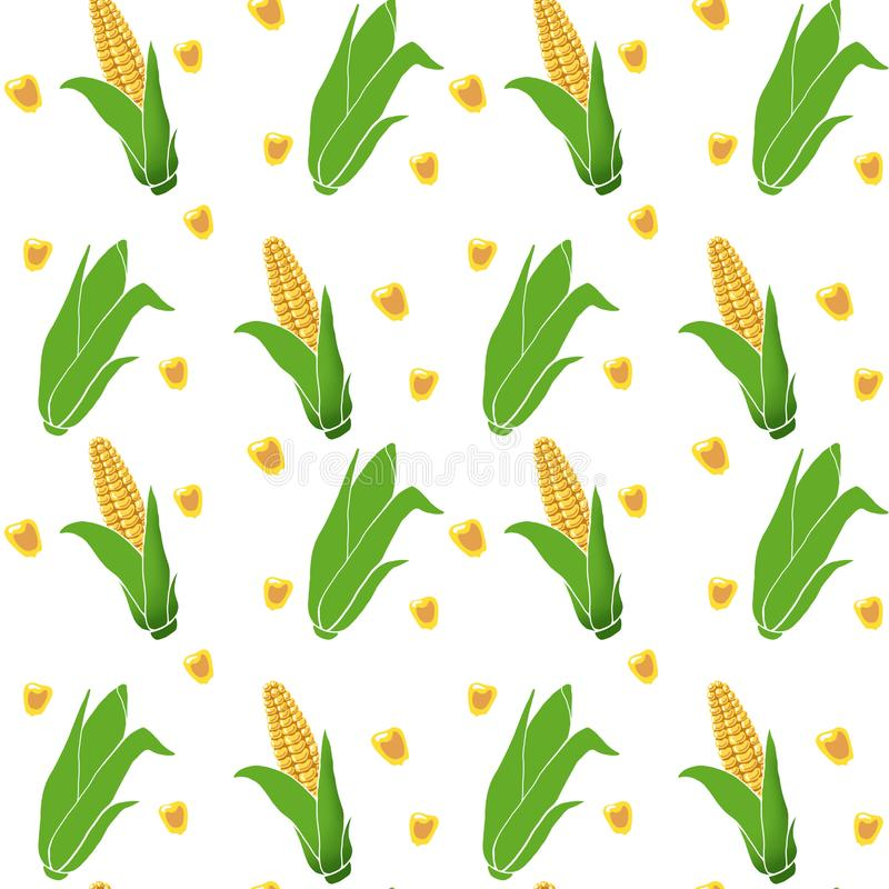 Pattern seamless hand drawn yellow corn cobs with green leaves, grains on white background. vector illustration