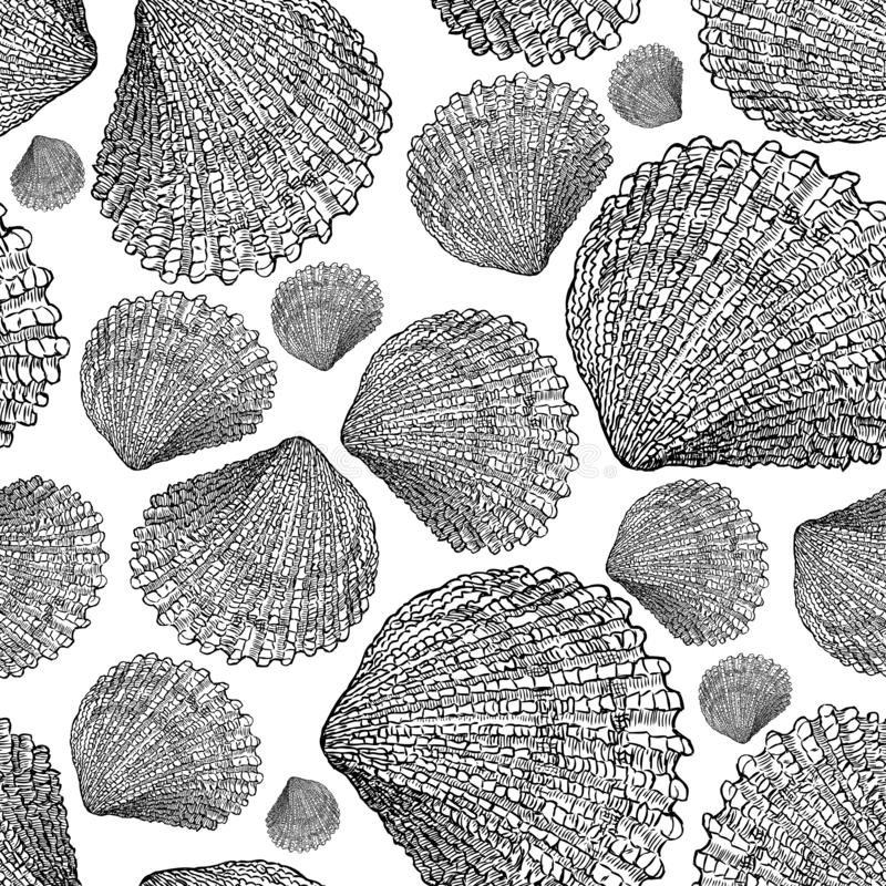 Pattern of the seashells sketches royalty free illustration
