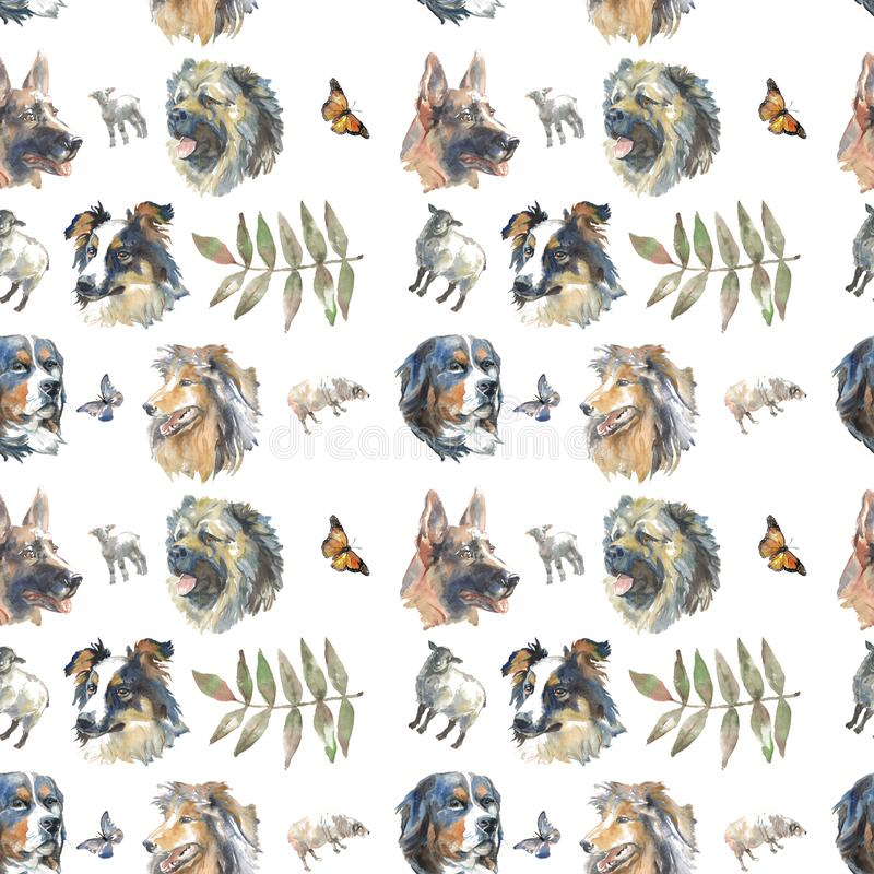 Pattern - shepherd`s dogs royalty free illustration