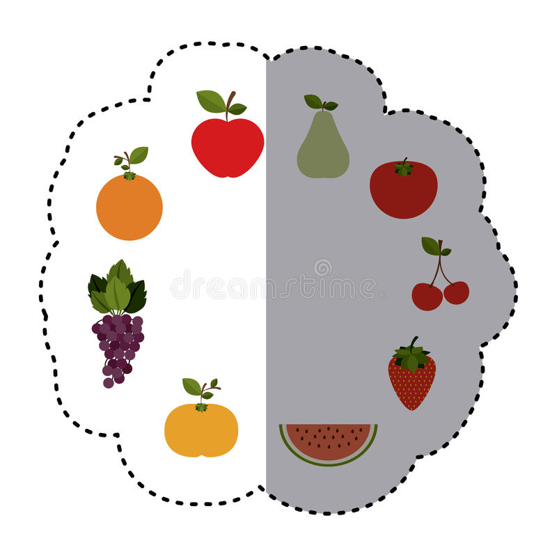 Pattern sticker with fruits in circular shape. Vector illustration vector illustration