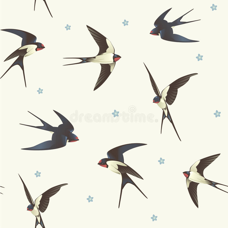 Download Pattern with swallows stock vector. Illustration of beauty - 21940426