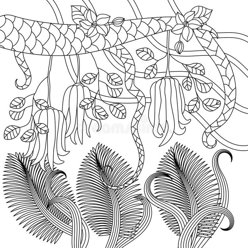 Pattern with tropical plants, flowers and citron. Buddha`s hand . Vector illustration. Adult antistress coloring page royalty free illustration