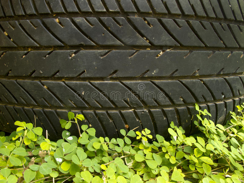 Pattern of tyre above small plant royalty free stock photos