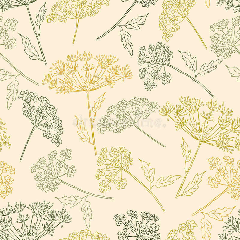 Pattern of the umbellate flowers stock illustration