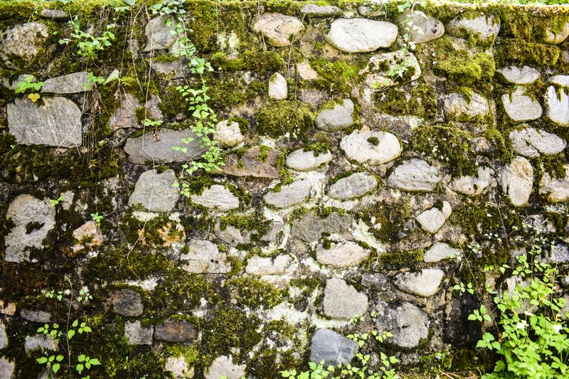 Pattern Vintage Color Texture of Modern Style Design Decorative Uneven Cracked Real Stone Wall Surface with Cement for stock images