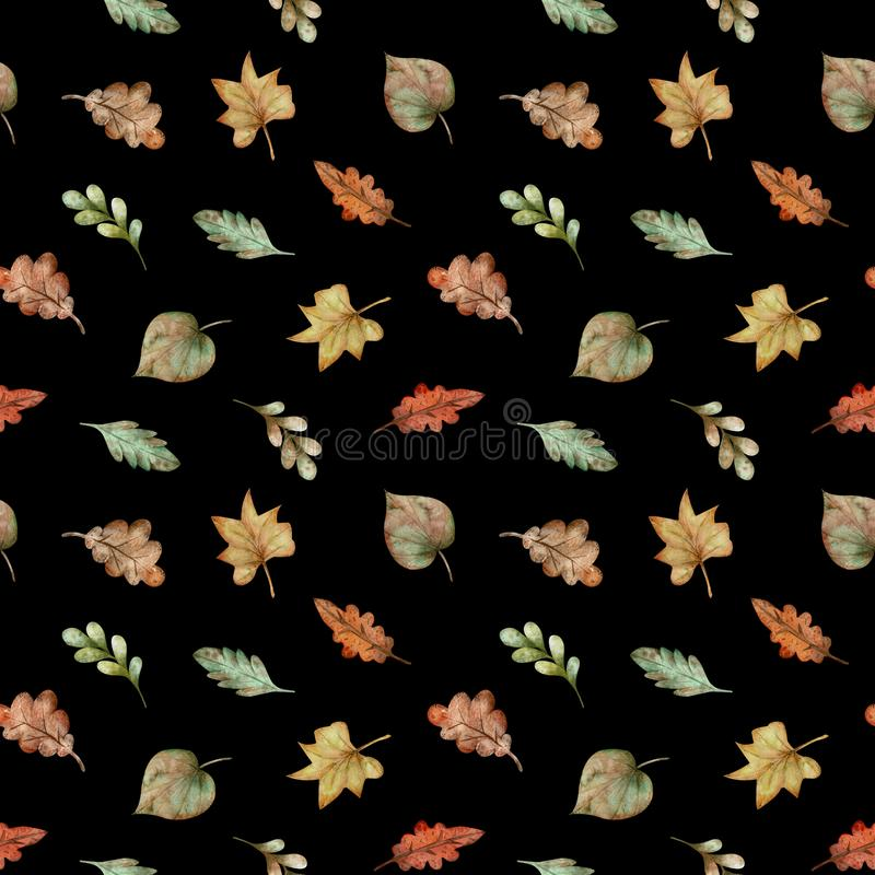 Pattern of watercolor colorful autumn leaves - red, yellow, green, orange, brown on black background. royalty free illustration