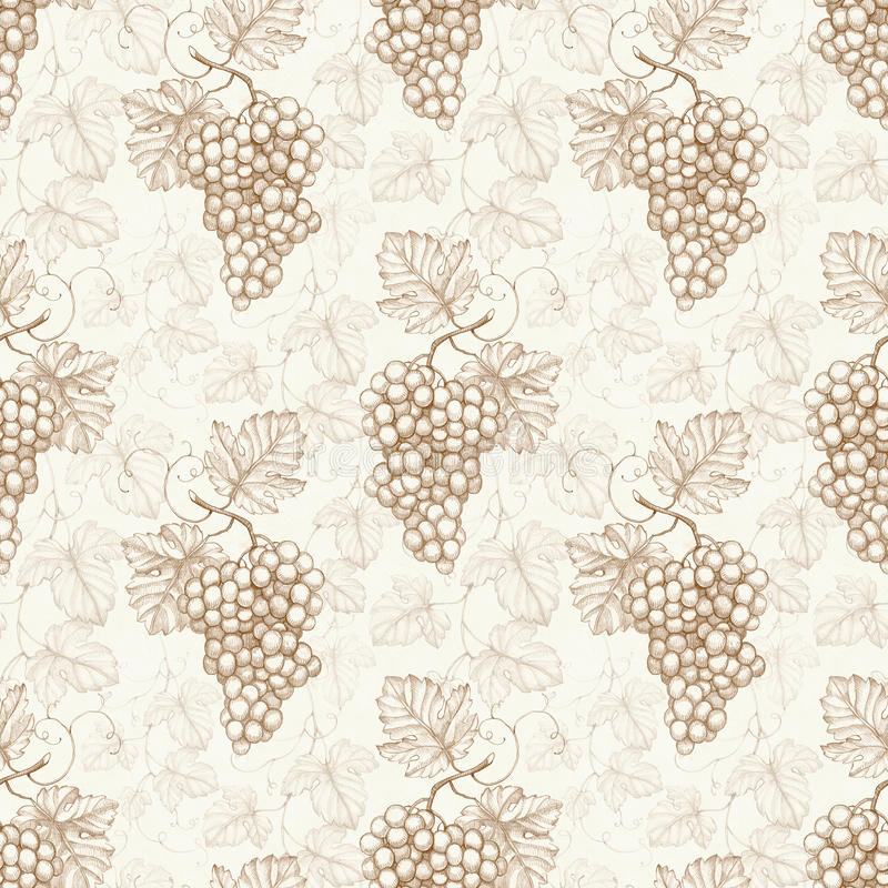 Pattern with watercolor illustration of grapes vector illustration