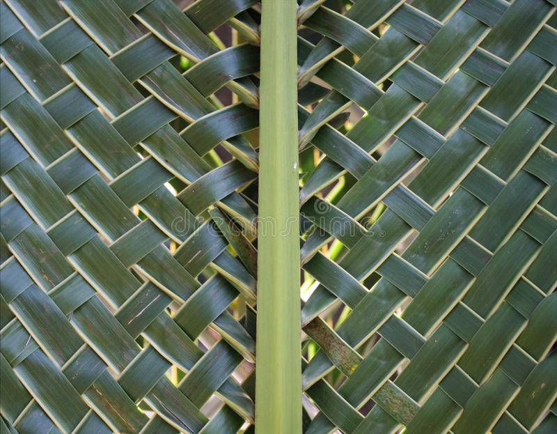 Pattern weaving of coconut leaves stock photo
