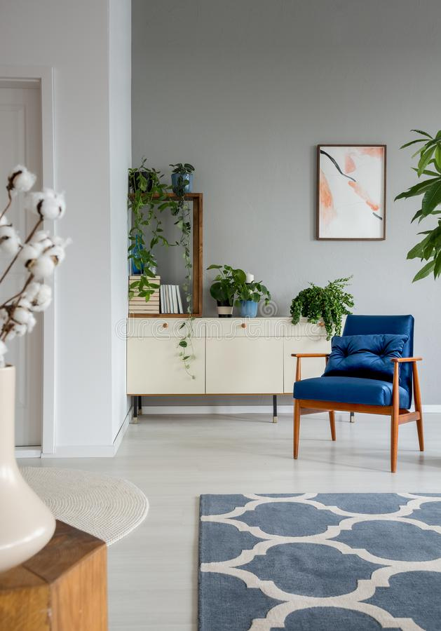 Patterned carpet and blue armchair in grey living room interior with poster and plants. Real photo stock photography