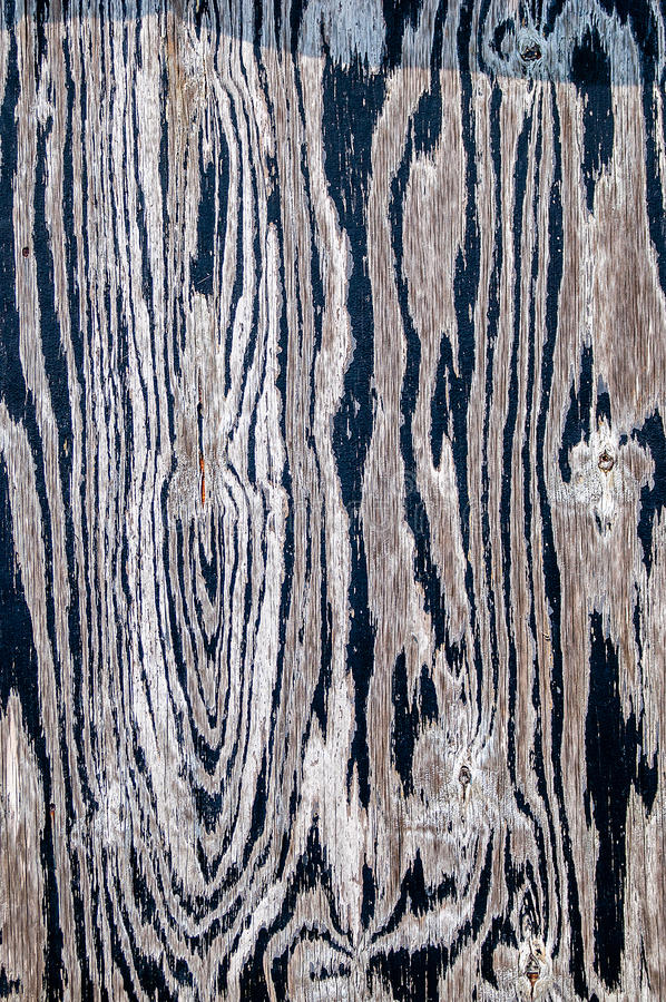 Download Patterns in Wood stock photo. Image of whites, backgrounds - 43346816