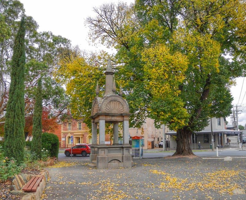 Patterson Memorial Victory Park Castlemaine arkivfoto
