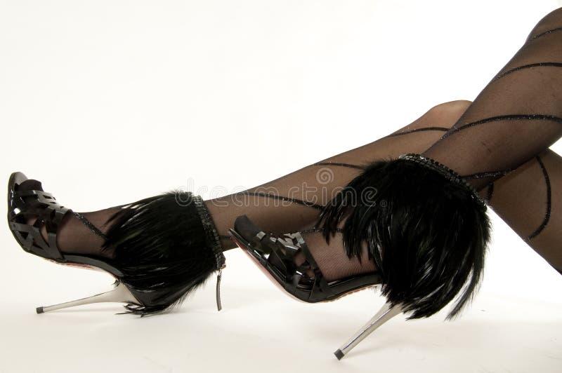 Pattes et chaussures sexy image libre de droits