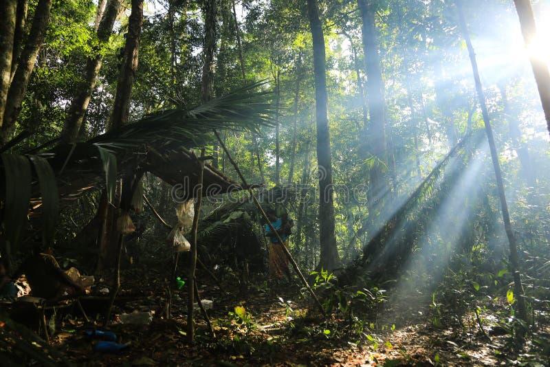 Download PATTHALUNG, TAILANDIA - 13 DE DICIEMBRE DE 2015: El Negrito De Tailandia Son Una Tribu Del Saa-gai Que Viven Pacífico En El Denso Fotografía editorial - Imagen de ellos, tailandia: 64205032