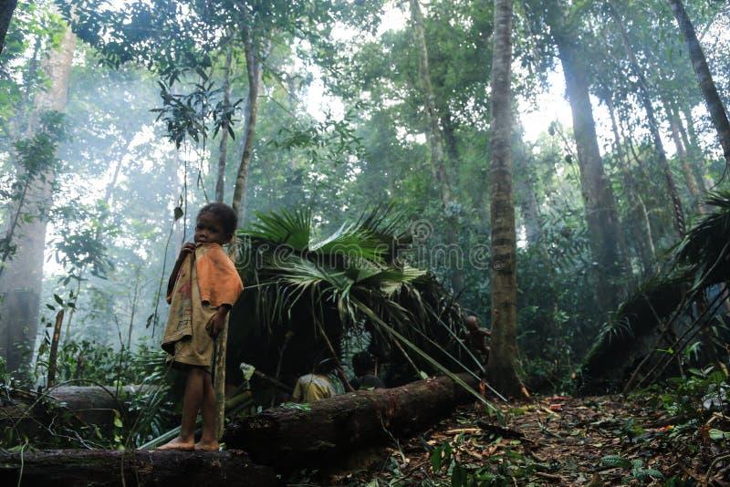 Download PATTHALUNG, TAILANDIA - 13 DE DICIEMBRE DE 2015: El Negrito De Tailandia Son Una Tribu Del Saa-gai Que Viven Pacífico En El Denso Imagen editorial - Imagen de tailandia, bosque: 64205065
