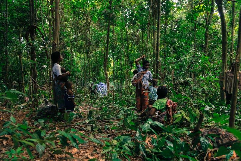 Download PATTHALUNG, TAILANDIA - 13 DE DICIEMBRE DE 2015: El Negrito De Tailandia Son Una Tribu Del Saa-gai Que Viven Pacífico En El Denso Foto editorial - Imagen de tailandia, tradición: 64205496