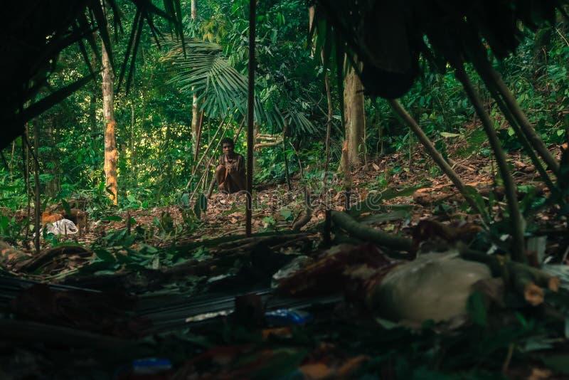 Download PATTHALUNG, TAILANDIA - 13 DE DICIEMBRE DE 2015: El Negrito De Tailandia Son Una Tribu Del Saa-gai Que Viven Pacífico En El Denso Imagen editorial - Imagen de quién, pacífico: 64205805