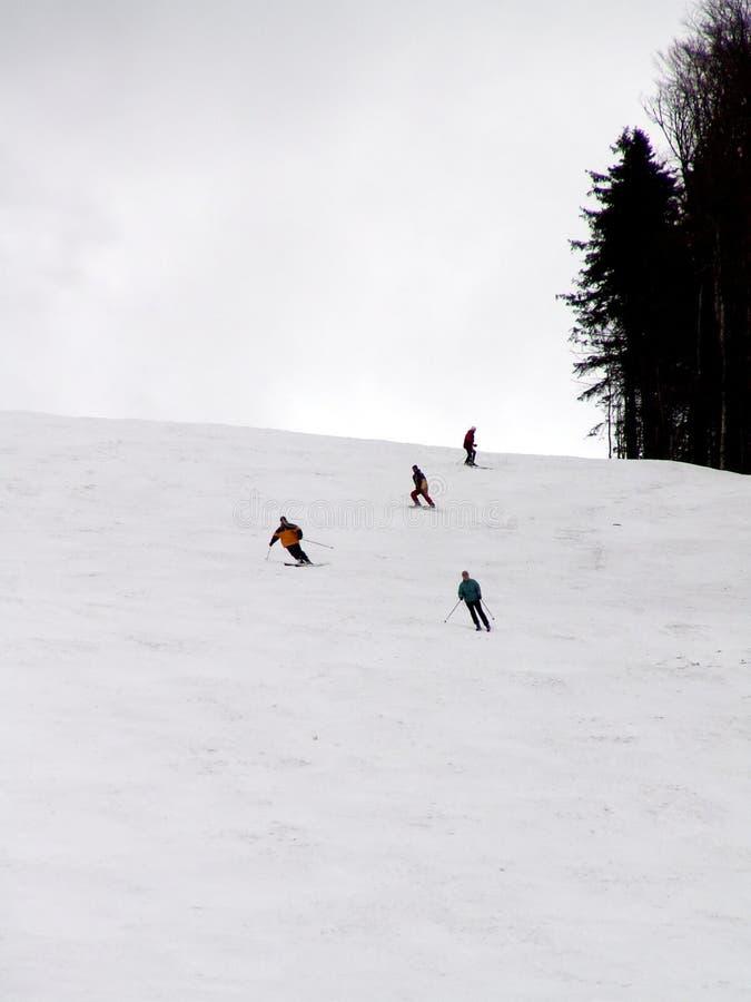 Download Pattino fotografia stock. Immagine di attività, neve, cielo - 221942