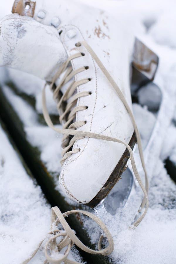 Pattino di ghiaccio immagine stock