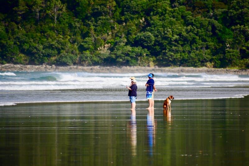 Pauanui-Strand, Pauanui, Neuseeland - 24. Februar 2019: Eine Gruppe von Personen, die etwas auf einem Strand besprechen, und ein  stockfotografie