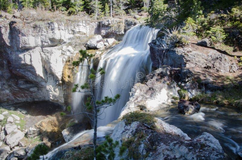 Paulina Lake Falls fotografering för bildbyråer