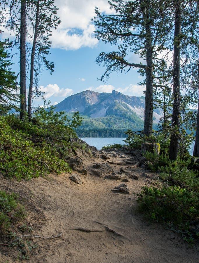 Paulina Peak Framed durch Bäume entlang Spur stockbilder