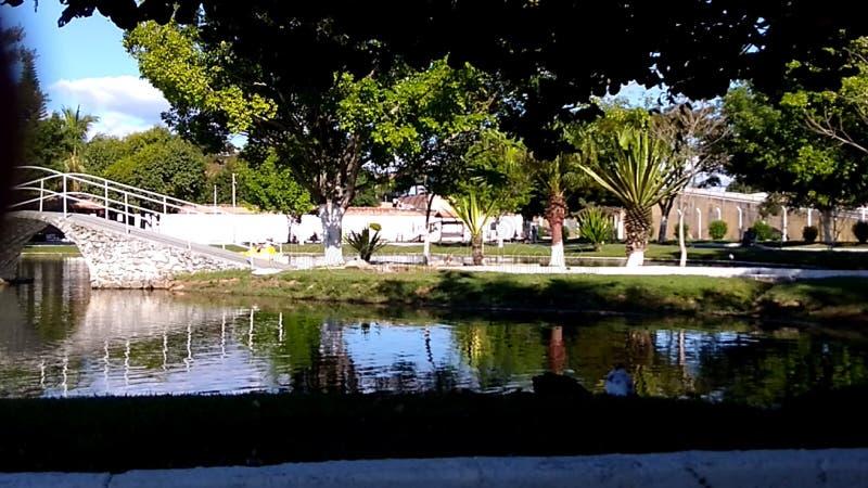Paulista ecológico da cachoeira do parque, SP Brasil fotografia de stock royalty free