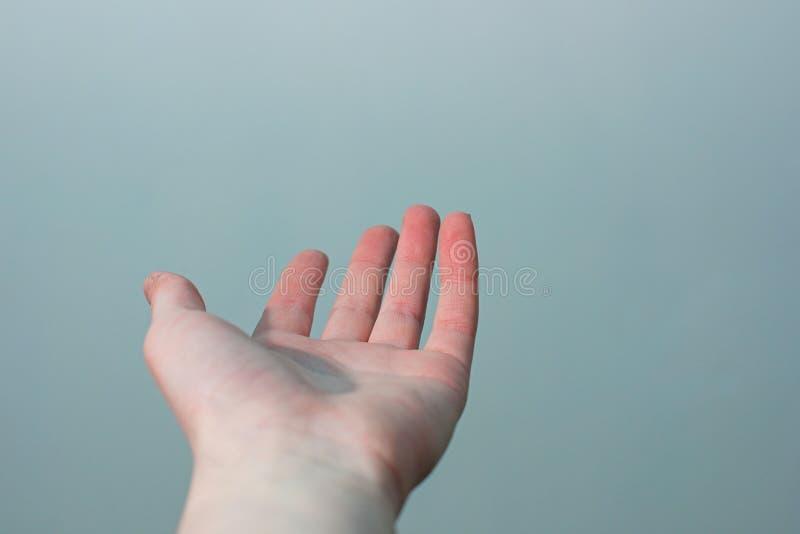 Paume femelle de main sur un bleu-clair avec un fond vert, foyer mou images stock