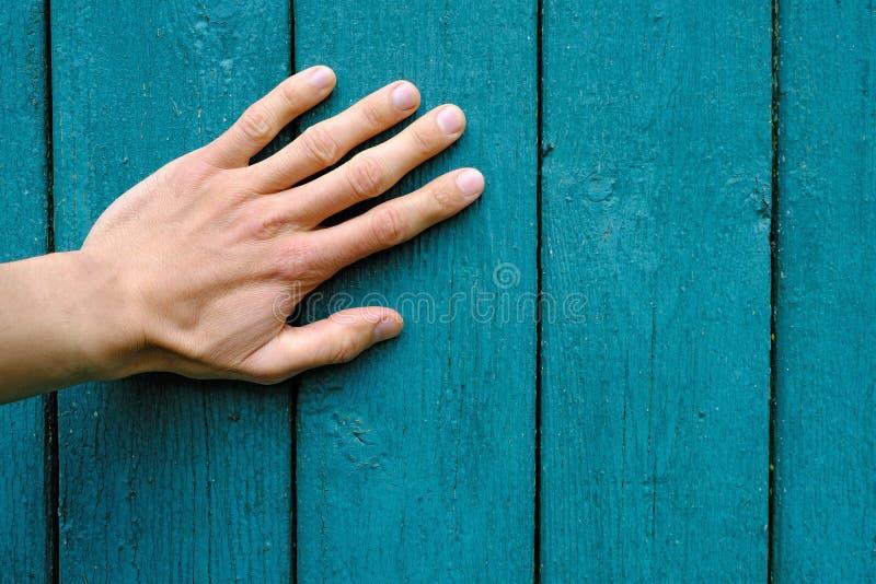 paume humaine de main sur les planches en bois vertes verticales avec éplucher la peinture, plan rapproché de texture photographie stock