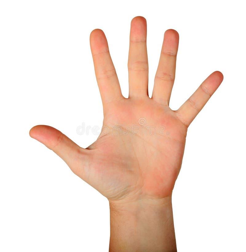 Paume ouverte de main masculine de geste avec cinq doigts photographie stock