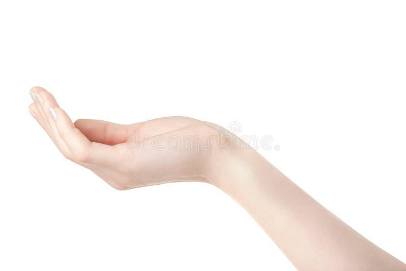 Paume ouverte de main vide de femme sur le blanc photos stock