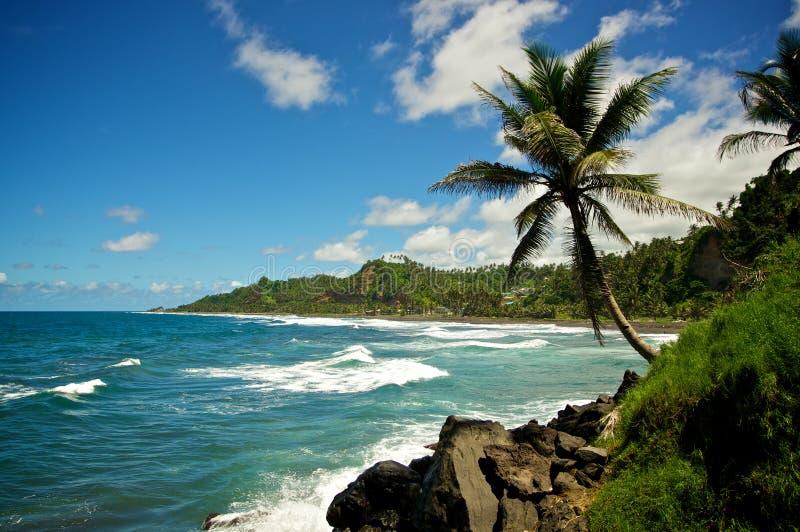 Paume presse de la plage photos stock