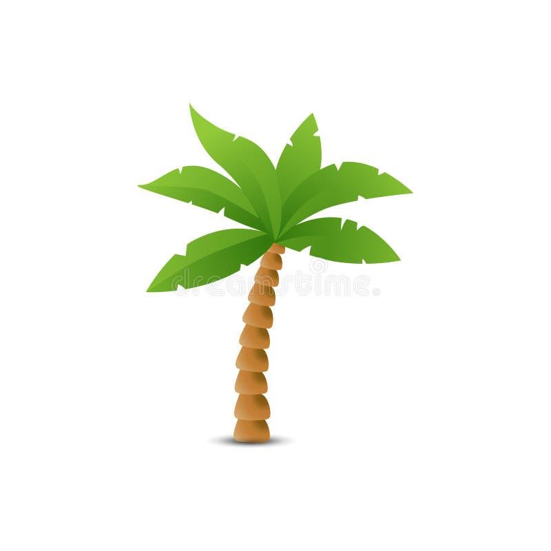 Paume tropicale sur le blanc illustration de vecteur
