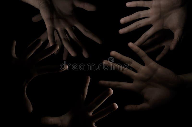 Paumes dans l'obscurité photo stock