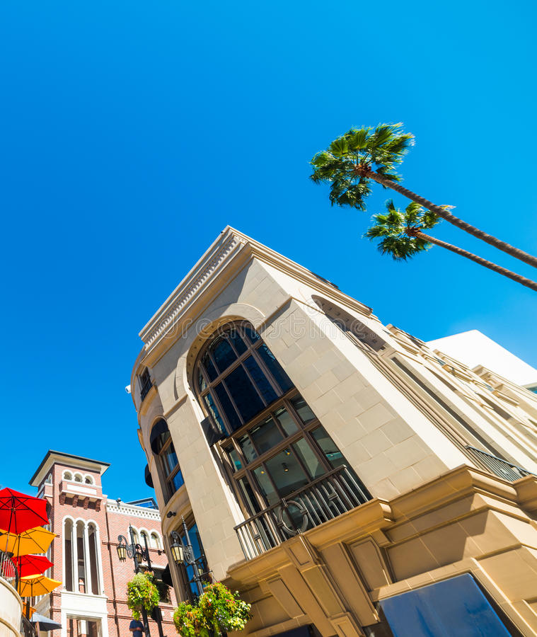 Paumes dans Rodeo Drive image stock