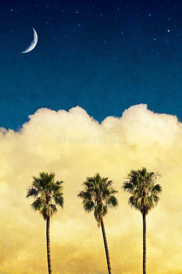 Paumes de lune photographie stock libre de droits