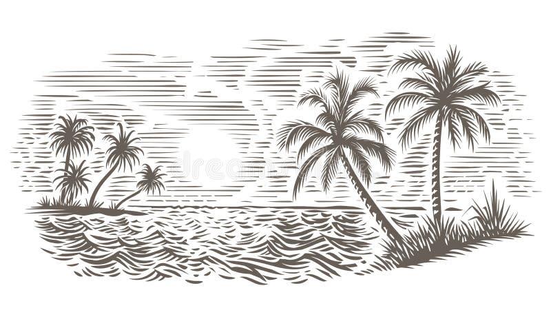 Paumes et illustration de style de gravure de mer Vecteur, d'isolement photos stock