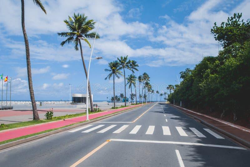 Paumes, rue et l'océan au Bahia, Salvador - Brésil image stock