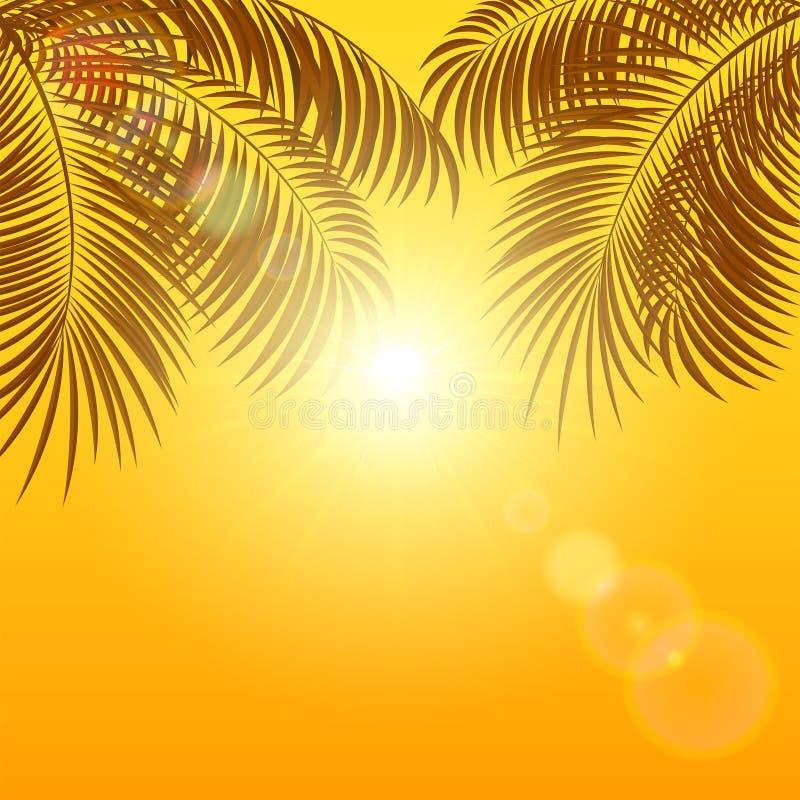 Paumes sur le fond orange illustration stock