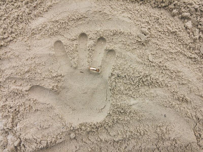 Paumes sur le sable de plage photo stock