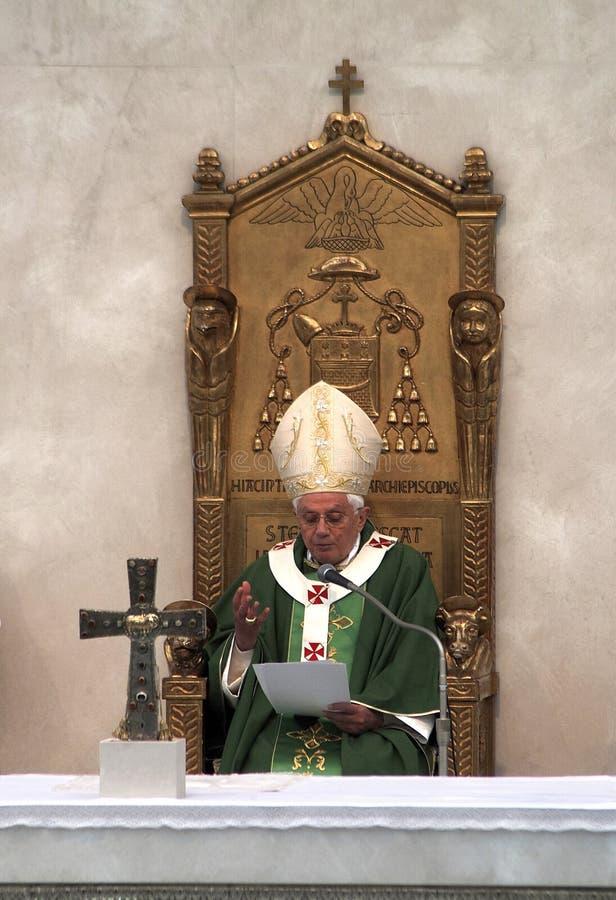 Paus royalty-vrije stock afbeeldingen