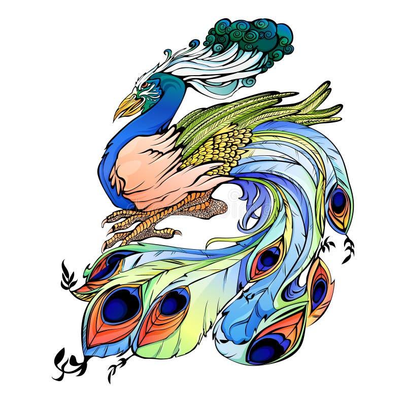 Pauw vectorillustratie Indische vogel stock afbeeldingen