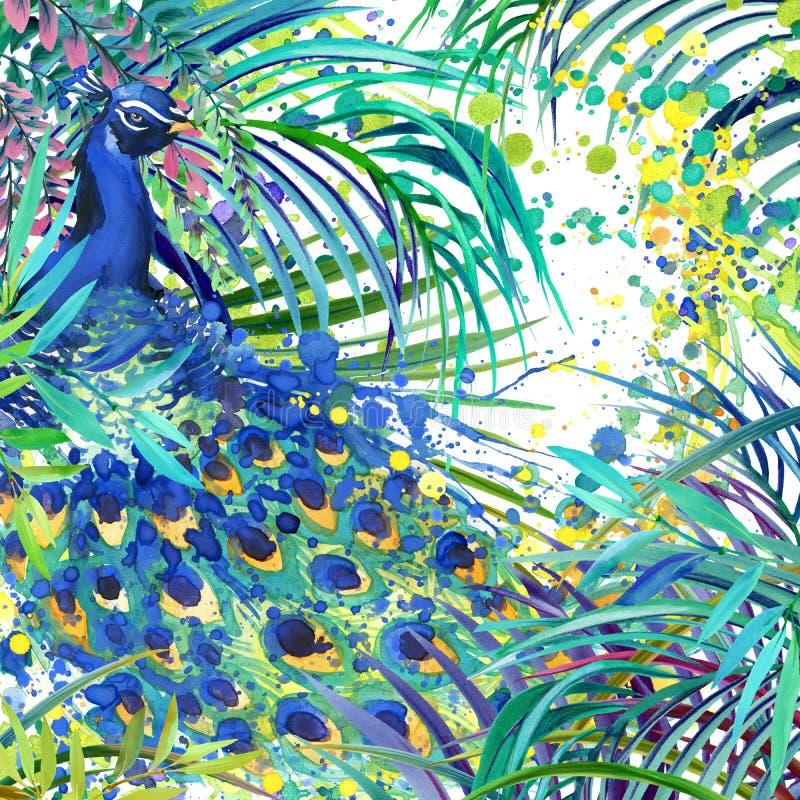 Pauwillustratie Tropische exotische bos, groene bladeren, het wild, de waterverfillustratie van de vogelpauw vector illustratie