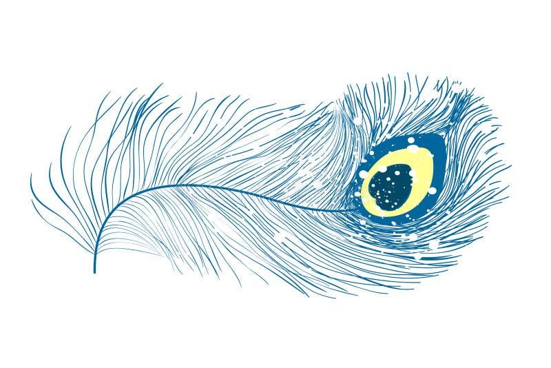 Pauwveren, vlakke stijl Recht en gebogen Blauwe gekleurde veren van exotische vogels stock illustratie